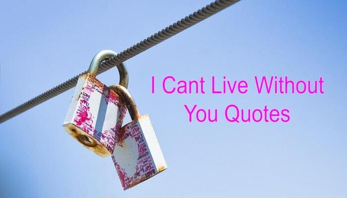 I Cant Live Without You Quotes